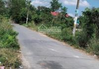 Bán đất vườn mặt tiền đường Xương Cá 1, xã Phong Phú, Bình Chánh, DT 1.1 ha, giá 4.8tr/m2