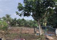Đất mặt tiền Lương Ngang, xã Tân Nhựt, Bình Chánh
