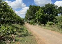 Bán đất vườn đã có 200m2 thổ cư