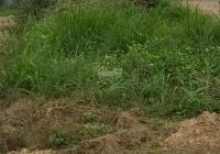 Cần việc bán lô đất khu quy hoạch ở thôn 10, xã Lý Trạch, Huyện Bố Trạch, Tỉnh Quảng Bình