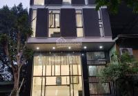 Bán nhà mặt phố Phan Kế Bính Quận Ba Đình 60m2, 5 tầng thang máy, giá 17,8 tỷ