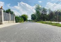 Bán lô đất đường Số 20 Tam Phước - Long Điền - Bà Rịa Vũng Tàu, diện tích 40x53m sẵn 150m2 TC