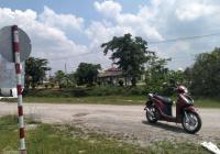 Cần ra hàng gấp 35x53 đất lúa bao lên thổ, đất nằm ngay khu Cát Tường Phú Sinh 7 Kì Quan 100m