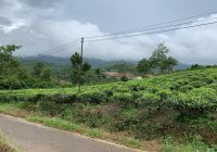 Cần bán 1736m2 đất đường B Lao Xê Rê, Đại Lào, TP. Bảo Lộc, giá 1,7 tỷ