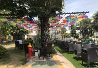 Chính chủ bán đất đường Phan Thanh Giản, gần chợ Lái Thiêu, Thuận An, Bình Dương