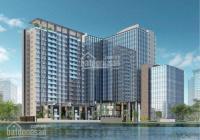 Mở bán CC BRG Grand Plaza 16 Láng Hạ, view hồ Thành Công. HTLS 0% miễn phí dịch vụ, CK 6%