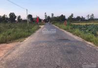Cần bán gấp 2 lô đất liền kề giá rẻ, khu vực Triệu Giang - Triệu Phong