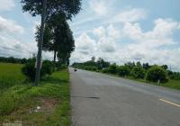 Cần bán gấp 9 công đất, Quốc Lộ 61C, Châu Thành A, 350tr/công