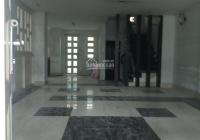 Biệt thự khu Bình Phú, Quận 6, 8*21, nhà mới, kinh doanh mọi ngành nghề