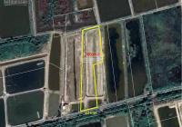 Bán gấp lô đất nuôi thủy sản giá rẻ xã Lý Nhơn, huyện Cần Giờ TPHCM