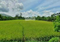 Bán đất công đường Quốc Lộ 61C - đoạn 2.000 Châu Thành A, Hậu Giang