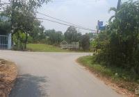 Bán lô đất mặt tiền đường nhựa số 3 xe tải, diện tích 2171m2, xã Tân Thông Hội, Củ Chi