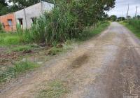 Bán lô đất Xã Hiệp Hòa - Đức Hòa - Long an Đường xe hơi DT: 10x42 đất lúa giá: 800tr