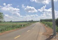 Bán Lô đất mặt tiền đường nhựa chính Quốc Chí, Đông Hoà, diện tích 1000m2 sổ riêng, giá 1,55 tỷ