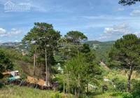 Chính chủ cần bán đất đường 3 Tháng 4, P3, Đà Lạt. 1300m2 đã chuyển thổ cư view siêu đẹp giá 24 tỷ
