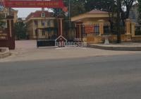 Bán 2 lô đất ở Đại Áng, Thanh Trì, Hà Nội