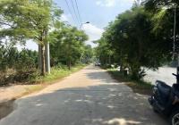 Bán đất tại xã Yên Mỹ, Thanh Trì, Hà Nội