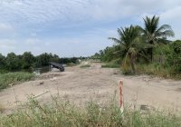 Cần bán 2 lô đất hẻm đường Trương Văn Đa, Xã Bình Lợi, Huyện Bình Chánh