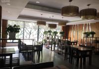 Cho thuê nhà mặt phố Phan Đình Phùng: Diện tích 55m2 x 4 tầng, mặt tiền 4m, vị trí rất đẹp, KD tốt