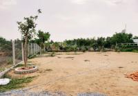 Kẹt tiền bán đất TT Cần Giuộc, đường xe hơi 4,5m, cách QL50 600m, gần nhà thờ, SHR, giá 2tr/m2