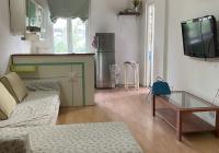 Cho thuê căn hộ 50m2, 1PN, nội thất đầy đủ, mặt phố Lê Thánh Tông, Q. Hoàn Kiếm