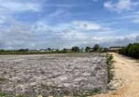 Bán đất 8 sào hẻm Nguyễn Thông - Tân Bình - TX LaGi giá vốn