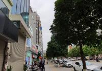 Chính chủ bán gấp nhà mặt phố Khúc Thừa Dụ - Cầu Giấy, 137m2 x 4T, MT 11m, giá 45 tỷ