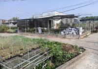 Bán 343m2 nhà và đất thổ cư khu làng hoa Sa Đéc. Liên hệ 0389556096