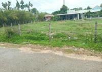 Thanh lí nhanh lô đất mặt tiền đường Bàu Tre, Củ Chi, DT 400m2 giá chỉ có 1tỷ5. SHR, LH 0379784443