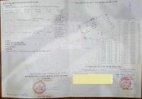 Cần bán đất tại Bình Khánh, Cần Giờ phù hợp quy hoạch khu dân cư