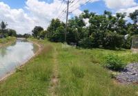 Chính chủ cần bán đất 297m2 xã Trung Lập Hạ, huyện Củ Chi, TP HCM
