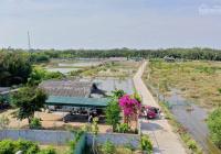 Bán nhanh nhà vườn 1711m2 ngay ĐT 826C có sẵn ao cá vườn cây, chim bồ câu, nhà, SHR, xe hơi tới đất