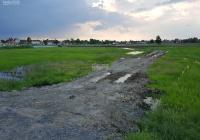 Bán 2552m2 đất lúa có thổ 672m2, mặt đường Trần Văn Nghĩa, Long An. Giá 3,4tr/m2 có thương lượng