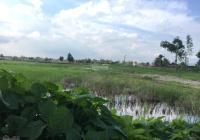 Bán nhanh 2552m2, góc 2 MT Trần Văn Nghĩa có 627m2 đất thổ, khu vực được lên thổ, SHR, đường đan 7m