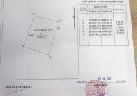 Bán gấp lô đất 10604m2 xã Phan Thanh - Bình Thuận giá rẻ chỉ 75 nghìn/m2