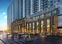 Chính chủ cần bán cắt lỗ một số căn hộ tại chung cư Roman Plaza, DT 124m2. LH 0988.954.989