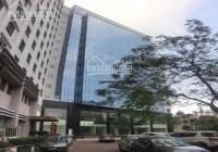 Cho thuê VP hạng A Horison Tower, 36 - 40 Cát Linh, 100m2, 200m2, 300m2... 579m2 giá từ 249k/m2/th