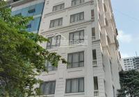 Bán nhà phố Đào Tấn, lô góc, thang máy, kinh doanh tốt DT 90/100m2 5T MT 10m. 23.8 tỷ