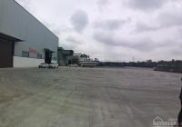 Cho thuê 2000m2 kho, xưởng đối diện KCN Đại An, Cẩm Giàng, Hải Dương