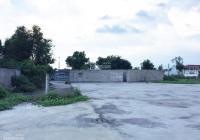 Bán nhanh 1200m2 đất thổ vườn để xây nhà xưởng, làm kho, mặt tiền đường nhựa lộ giới 23m, SHR