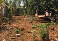 Cần bán lô đất gần ủy ban xã Tân Lập: DT: 10x20m = 200m2. Giá 920 triệu sổ hồng riêng