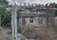 Covid ngộp tiền cần bán gấp lô đất mặt tiền 3000m2, huyện Củ Chi
