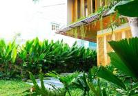 Giá mùa dịch! Biệt thự sân vườn Bùi Thị Xuân, Phường 1, Tân Bình, DT 8m*20m, giá chỉ 19 tỷ TL