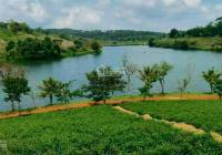 Kẹt tiền cần bán gấp lô đất dưới 500tr ở Bảo Lộc