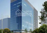 Chủ đầu tư dự án Detech Tower II, mặt đường Nguyễn Phong Sắc, Cầu Giấy cho thuê VP từ 75m - 500m2