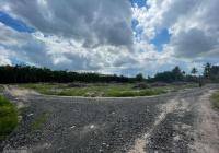Đất Tân Hội - gần khu công nghiệp Tân Hội
