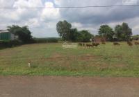 Kẹt tiền cần bán nhanh lô đất tại xã Láng Dài-Đất Đỏ-Bà Rịa Vũng Tàu