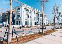 Chính chủ cần bán biệt thự nhà vườn dự án vip tại Bãi Cháy