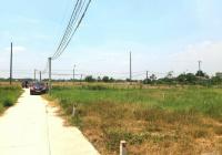 Cần bán mảnh đất 300m2 thổ + 944m2 vườn, vuông vức, đường Ấp 3 xã Long An, Giá chỉ 3,1tr/m2