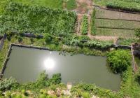 Lô đất view cánh đồng, có ao cá, có sẵn nhà giá rẻ. LH 0983517808